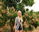 Lina Asora Storhaug Liljebrunn by a flowering mango tree and two beautiful blooms
