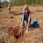 Ann Sandqvist planting a mukau tree