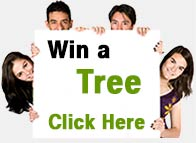 Win a Better Globe Tree!