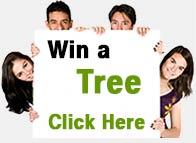 Win a Better Globe Tree!