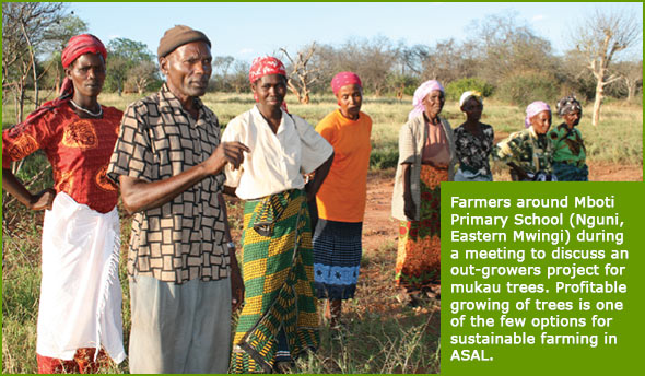 Farmers around Mboti Primary School