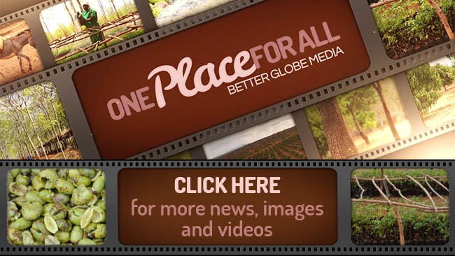 Better Globe Media - One Place for All